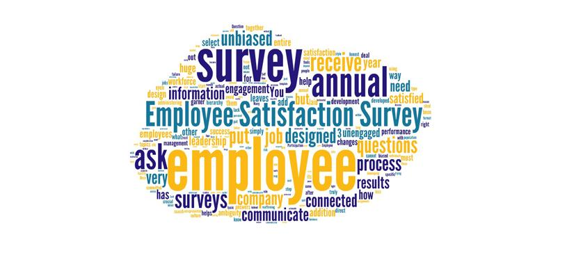 Employee Satisfaction Surveys